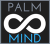 Logo Image for  Palmmind IT Solution